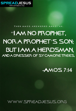 Amos Quotes From the Bible