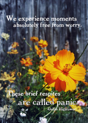 Wildflower Quote Photograph