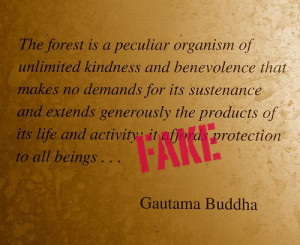 The forest is a peculiar organism of unlimited kindness and ...