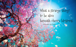 Quotes and Pics 119, Spring