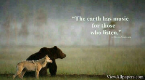 Bear Quotes High Resolution, Free download Animal Planet Bear Quotes ...