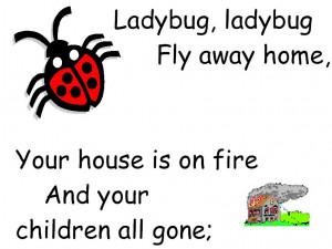 ladybug Ladybug Poetry