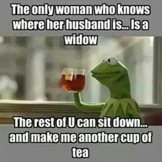KERMIT - BUT THAT'S NONE OF MY BUSINESS!!!