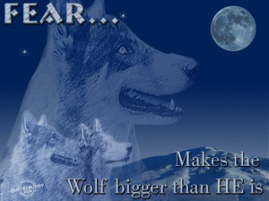 fear-makes-the-wolf-bigger-than-he-is-fear-quote.jpg