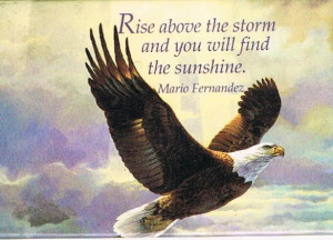 Rise above the storm and you will find Sunshine
