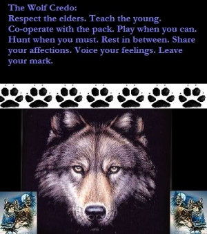 Native American Wolf Sayings Re: native american code of