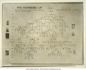 ... exhibit: &The Hapsburg lip,& 3rd International Eugenics Conference