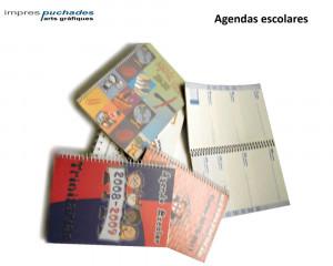Agenda Professor Agendas