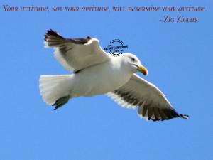 ://www.quotesbuddy.com/attitude-quotes/attitude-determines-altitude ...
