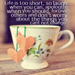 Quotes Picture: life is too short, so laugh when you can, apologize ...