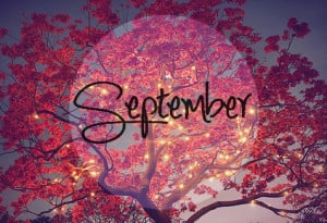 ... , music, n, pink, quotes, sayings, september, spring, summer, winter