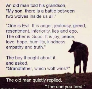 Good and Evil. Which wins? The one you feed!