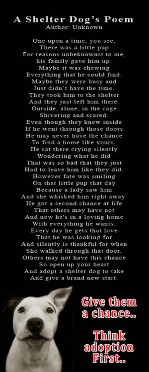 Animal Rescue Quotes A shelter dog's poem