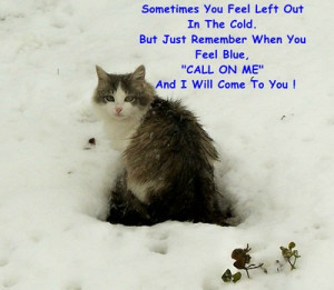 Am Here For You Friend Quotes Here for you kitty.