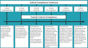 Terry Cross Cultural Competence Continuum Model