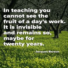 In teaching you cannot see the fruit of a day 39 s work It is
