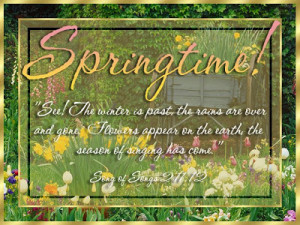 Happy Spring!! It's my birthday this weekend and I'm going away for a ...