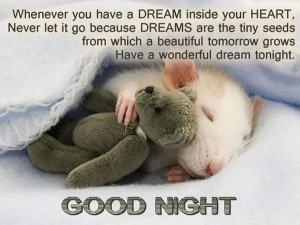 ... beautiful tomorrow grows Have a wonderful dream to night. Good Night