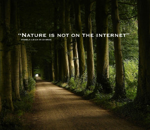 Forest For The Trees Quote