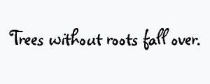 family reunion sayings: trees without roots fall over