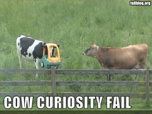 funny animals fails funny animals fails funny animals fails funny ...