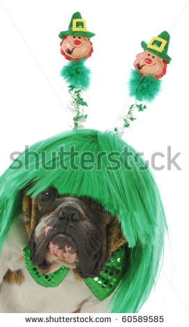Bear All Dressed For St Patricks Day With A Bouquet Of Shamrocks Stock ...