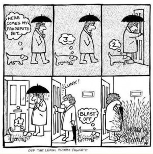 funny-picture-comics-rain-dog