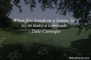 fate-When fate hands us a lemon, let's try to make a lemonade.