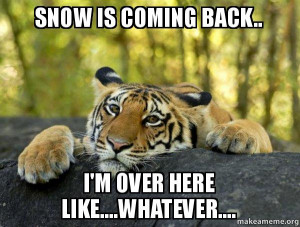 snow-is-coming-hp6uof.jpg