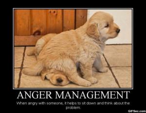 Demotivational Posters – Anger Management