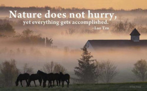 Nature Does Not Hurry Beauty Quotes