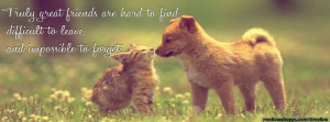 Cat and dog, Friendship quote timeline cover banner.