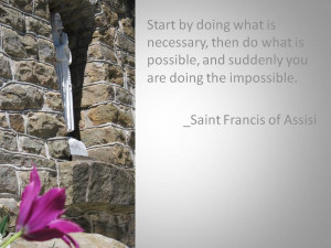 ... com.au/st_francis_of_assisi_animal_rights_quote_bag-149085312306412291