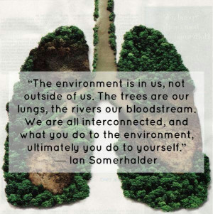 Time for a paradigm shift in awareness of our own cause and effect on ...