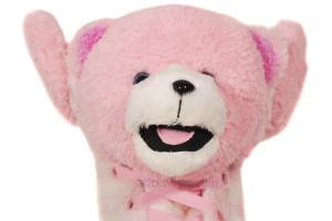 Teddy Bear Boy Shadow