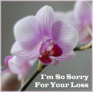 am-sorry-for-your-loss.jpg#sorry%20for%20your%20loss%20544x538