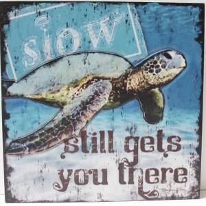 Wisdom fron sea turtles