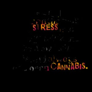 Quotes Picture: the biggest killer on the planet is stress and i still ...