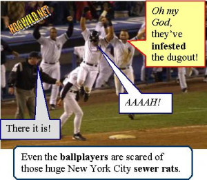 Even The Ball Players Are Scared Of Those Huge New York City Sewer ...