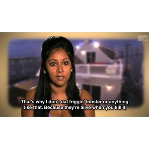 Related Pictures funny snooki quotes snooki quotes