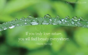 If You Truly Love Nature, You Will Find Beauty Everywhere