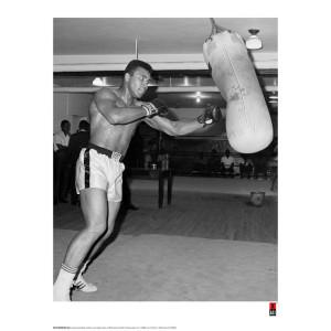 Muhammad Ali Fine Art Print - Training with Free Quotes Print