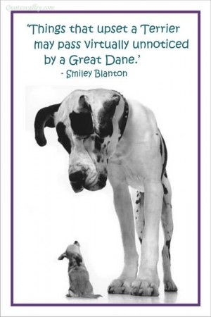 ... That Upset A Terrier May Pass Virtually Unnoticed By A Great Dane