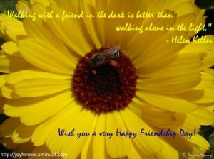 Friendship Sunflower.