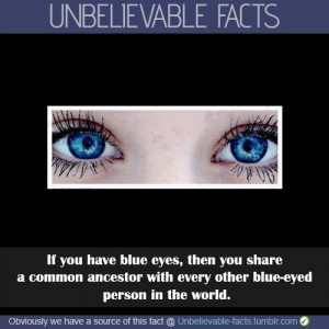 fun facts about people with blue eyes