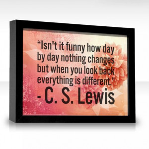 ... changes but when you look back everything is different. -C.S. Lewis