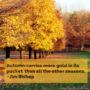 Autumn carries more gold in its pocket than all the other seasons ...