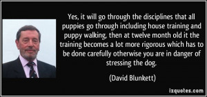 Yes, it will go through the disciplines that all puppies go through ...