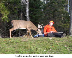 home funny deer funny deer animal pictures pics and animal wallpapers ...