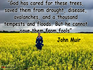 God has cared for these trees, saved them from drought,